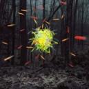 Light Art: istallazioni ed artisti dal grande impatto visuale.